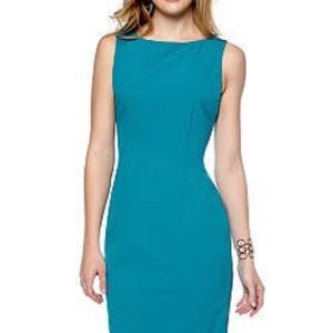Calvin Klein • Exposed Side Zipper Sheath